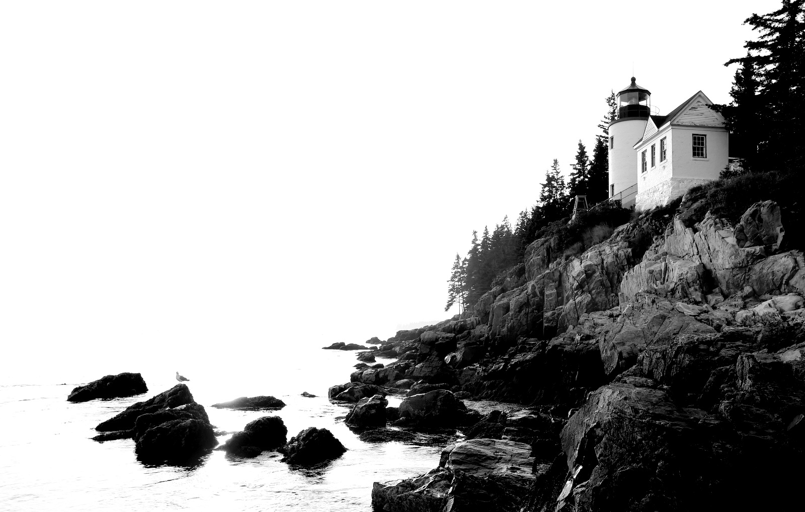 Lighthouse, Acadia National Park (1627)