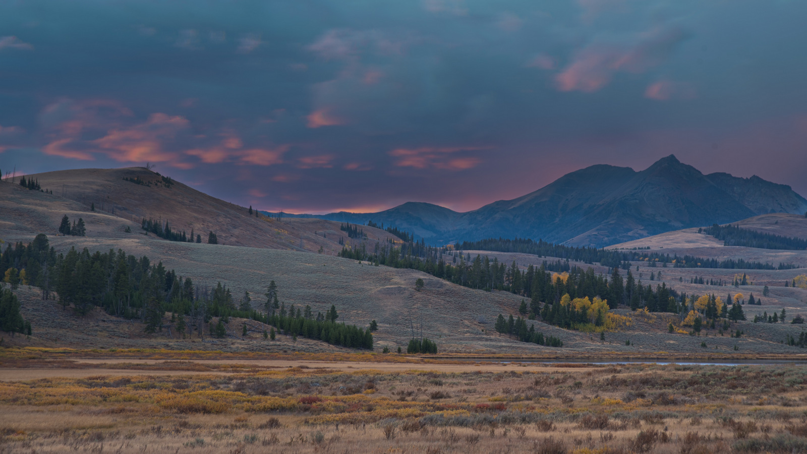 Landscape, Yellowstone NP (3684)