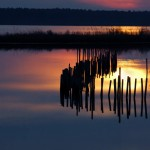 Sunset, Blackwater NWR - USA (4585)